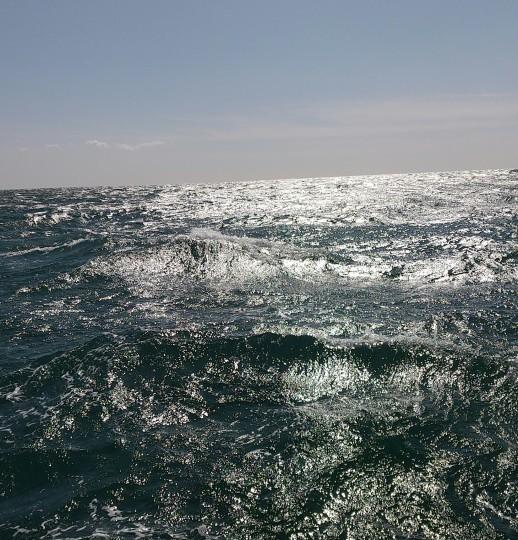 爆風ジギング❕❕乗船オーシャンズマロン❕❕_e0212944_12411336.jpg