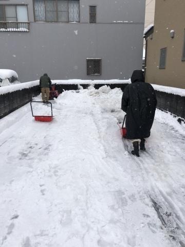 2月 またしても雪!_f0320958_13344488.jpeg