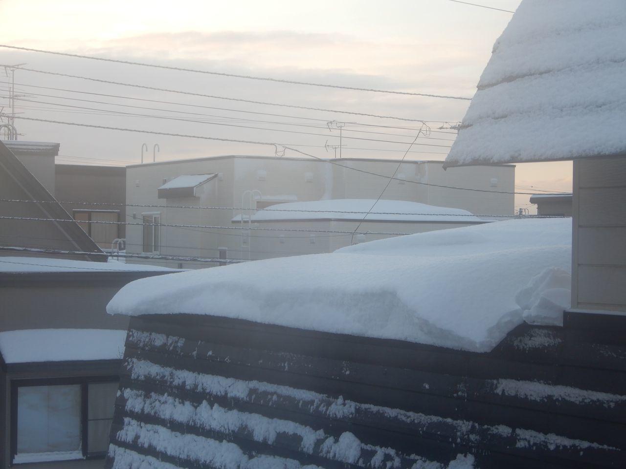 久しぶりに本格的積雪の朝_c0025115_20245357.jpg