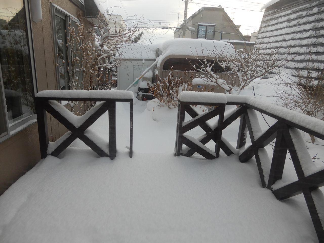 久しぶりに本格的積雪の朝_c0025115_20321154.jpg