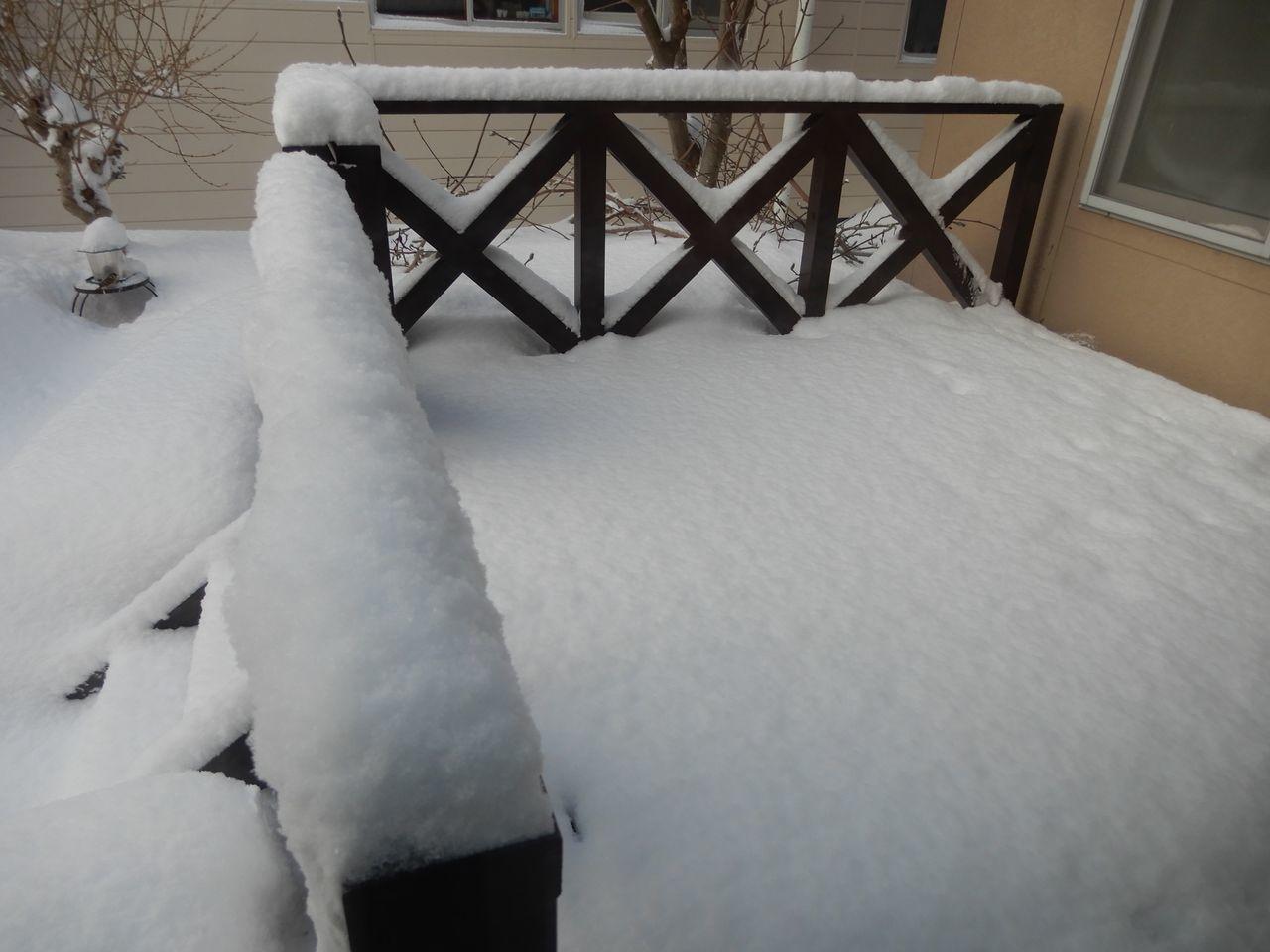 久しぶりに本格的積雪の朝_c0025115_20321708.jpg