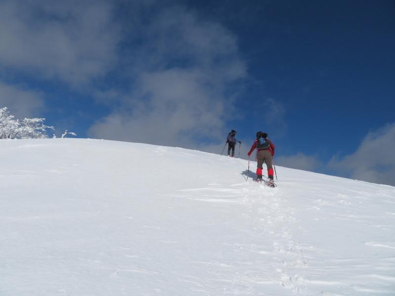 雪原が美しい 大日ケ岳 (1,708.9M)       登頂 編_d0170615_09200001.jpg