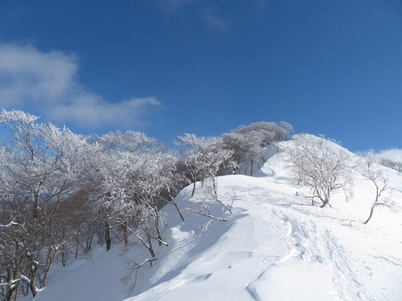 帰りも樹氷が美しかった 大日ケ岳 (1,708.9M)    下山 編_d0170615_19264590.jpg
