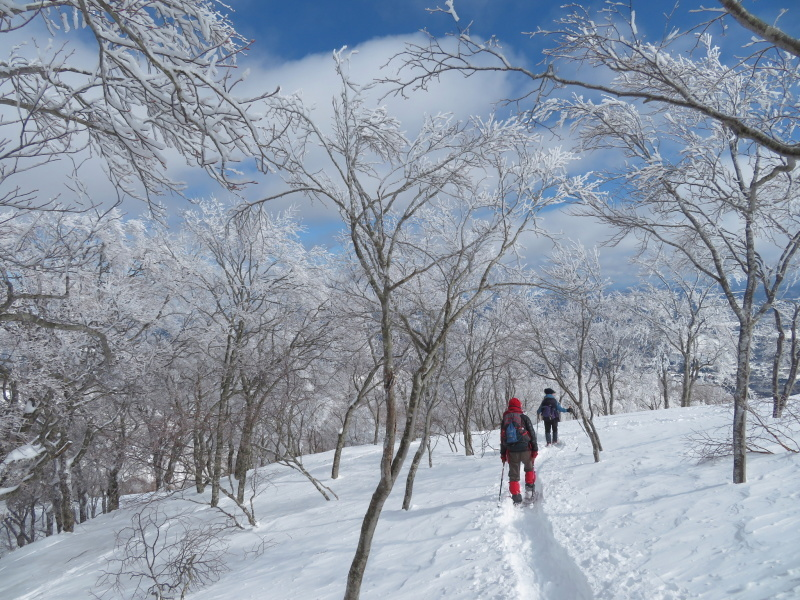 帰りも樹氷が美しかった 大日ケ岳 (1,708.9M)    下山 編_d0170615_19272137.jpg