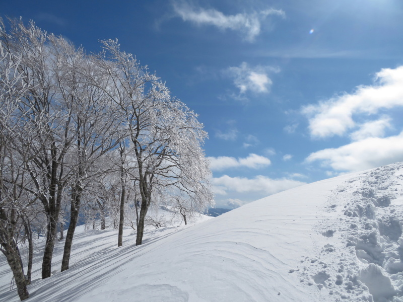 帰りも樹氷が美しかった 大日ケ岳 (1,708.9M)    下山 編_d0170615_19273030.jpg