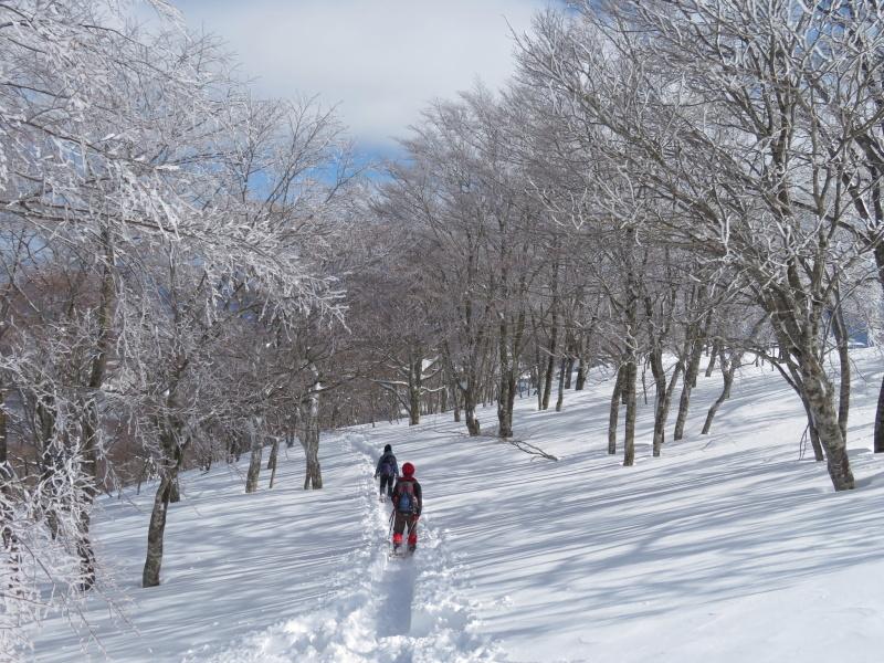 帰りも樹氷が美しかった 大日ケ岳 (1,708.9M)    下山 編_d0170615_19274017.jpg