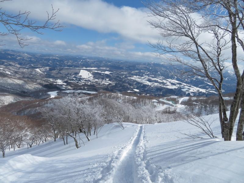 帰りも樹氷が美しかった 大日ケ岳 (1,708.9M)    下山 編_d0170615_19275061.jpg