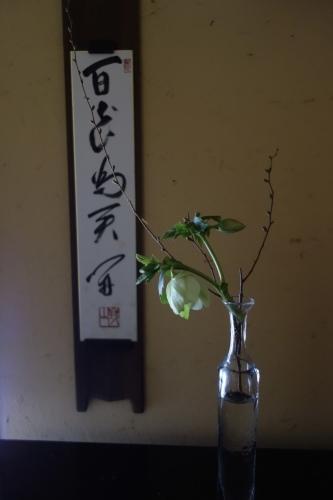 早春のお楽しみ_a0197730_10331484.jpeg