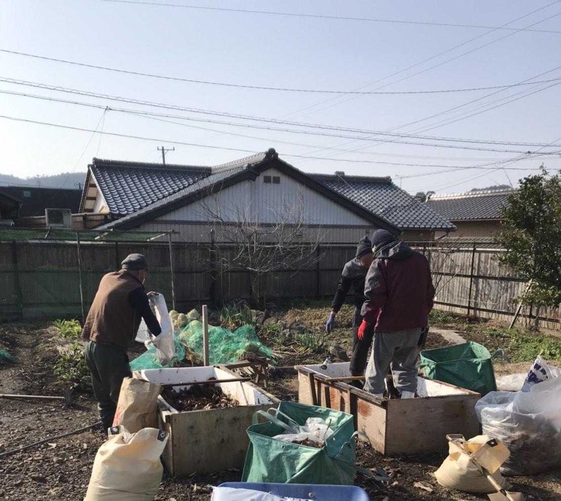自然発酵の踏み込み苗床_e0155231_23201909.jpeg