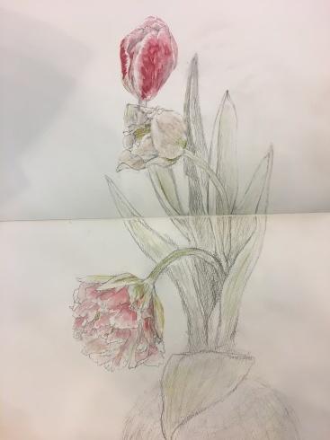 春。_c0160745_16382842.jpeg