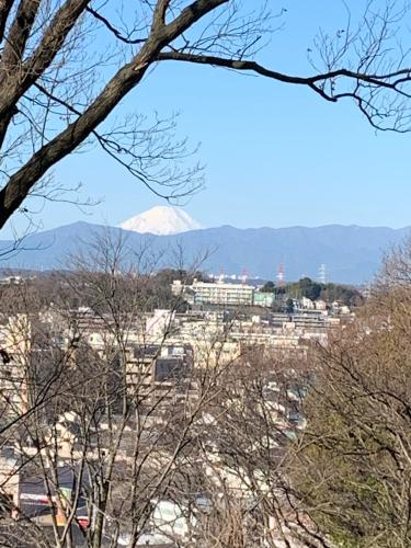 富士山_b0105897_20232432.jpg