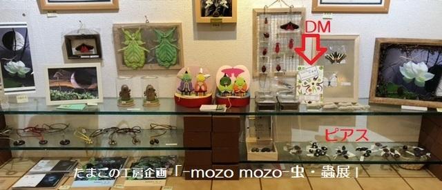 たまごの工房企画「-mozo mozo- 虫・蟲展」 その5_e0134502_18464168.jpg