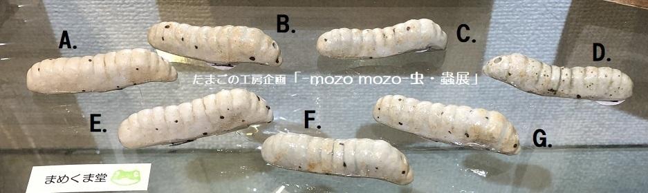 たまごの工房企画「-mozo mozo- 虫・蟲展」 その5_e0134502_18471193.jpg