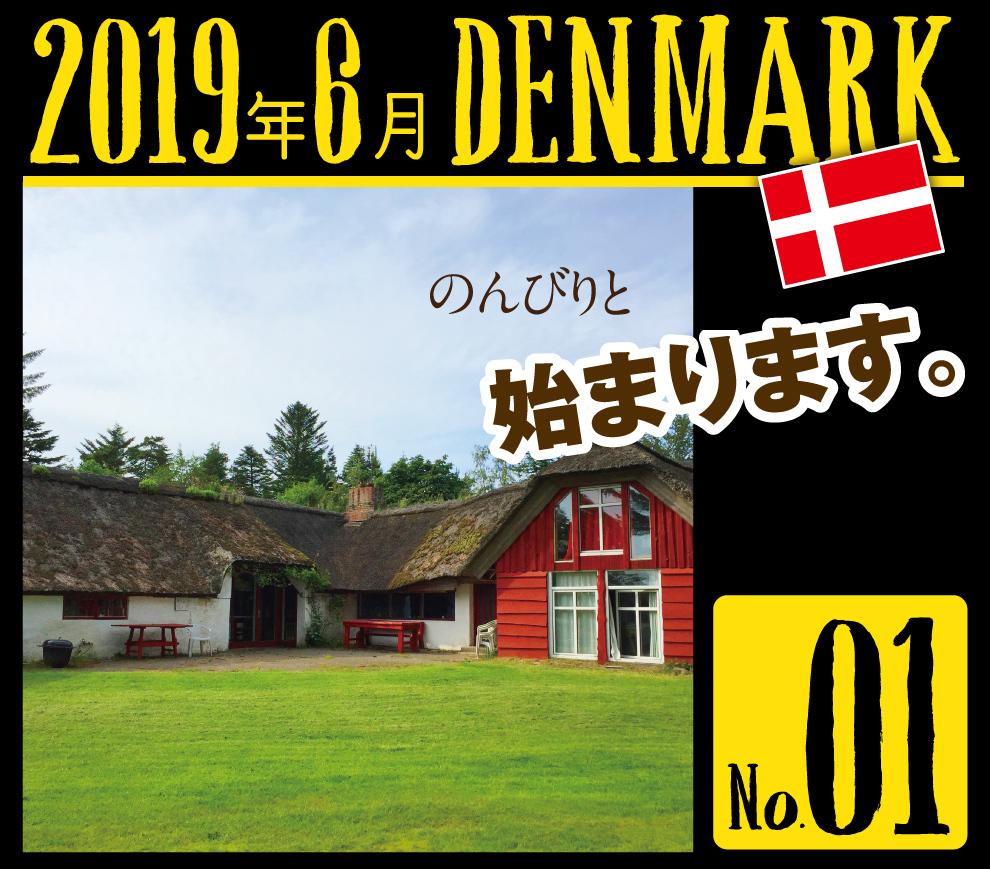 デンマーク一人旅☆2019その1_a0358016_22555245.jpg