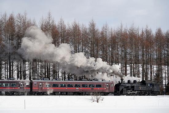 2021冬 しばれる道東の絶景を満喫(その2)_f0037227_15525764.jpg