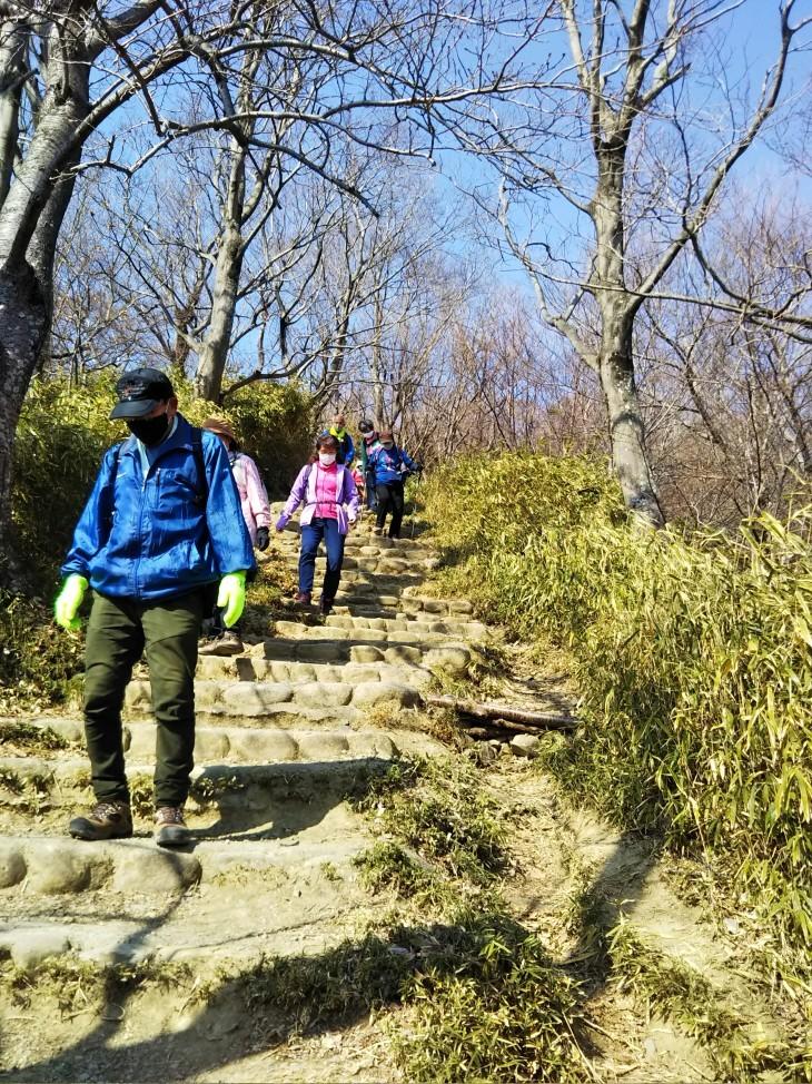 梅をたずねて カメさん歩き 『保久良神社梅林』_c0218841_17273354.jpg