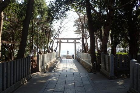 梅をたずねて カメさん歩き 『保久良神社梅林』_c0218841_20492136.jpg