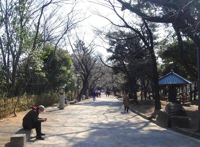 <2021年2月>【北区探訪】①:渋沢栄一に所縁深い「王子・飛鳥山」編_c0119160_19393072.jpg