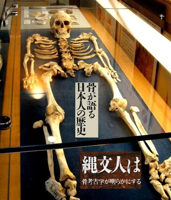 <2021年2月>【北区探訪】①:渋沢栄一に所縁深い「王子・飛鳥山」編_c0119160_21462125.jpg