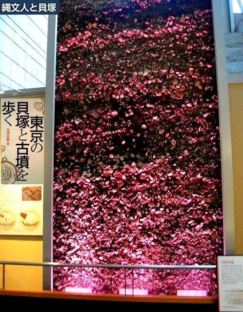 <2021年2月>【北区探訪】①:渋沢栄一に所縁深い「王子・飛鳥山」編_c0119160_21464040.jpg