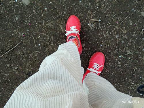 梅咲いてどこまでも歩いていける靴。_f0071480_16472639.jpg