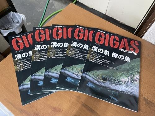 GIGAS 2021 vol.4 入荷しました!_e0143096_15052688.jpg