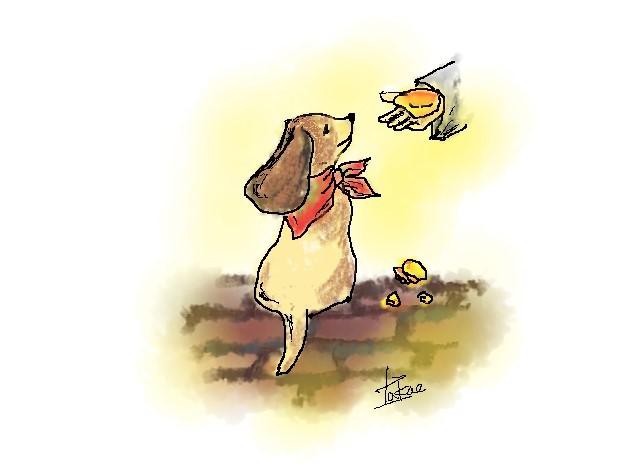 No.434 小犬は主人と同じパンを食す 2021.2.21_c0265111_16091800.jpg