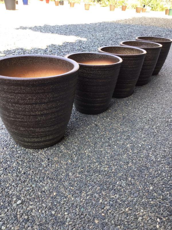 信楽鉢を買ってきましたわ_c0404712_12090736.jpg