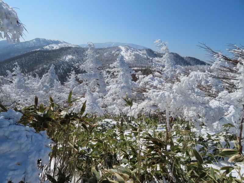 青空と樹氷 南沢山 (1,564M)      登頂 編_d0170615_09531267.jpg