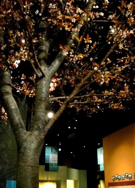<2021年2月>【北区探訪】①:渋沢栄一に所縁深い「王子・飛鳥山」編_c0119160_08312811.jpg