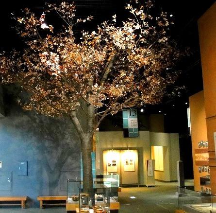 <2021年2月>【北区探訪】①:渋沢栄一に所縁深い「王子・飛鳥山」編_c0119160_08320192.jpg