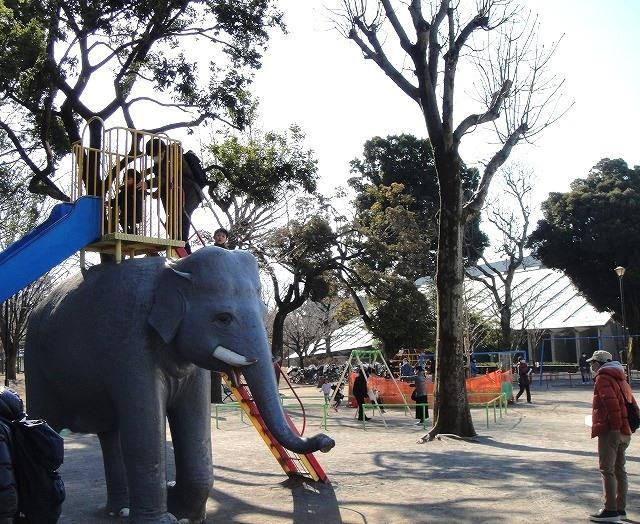 <2021年2月>【北区探訪】①:渋沢栄一に所縁深い「王子・飛鳥山」編_c0119160_10390128.jpg