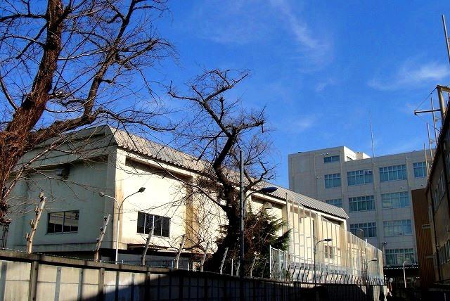 <2021年2月>【北区探訪】①:渋沢栄一に所縁深い「王子・飛鳥山」編_c0119160_11045775.jpg