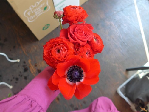 花修行~白と赤のアネモネのアレンジメント~_f0232060_11594715.jpg
