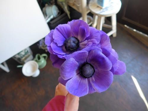 花修行~紫のアネモネのアンティーク風アレンジメント~_f0232060_12155610.jpg