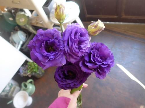 花修行~紫のアネモネのアンティーク風アレンジメント~_f0232060_12155964.jpg