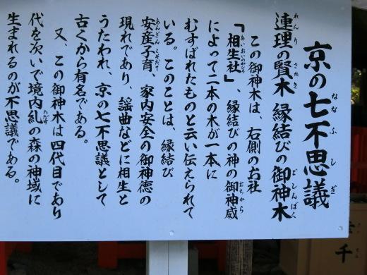 下鴨神社_f0226671_21474313.jpg
