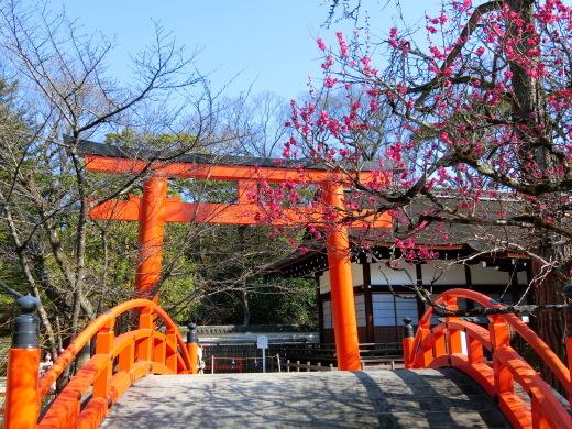 下鴨神社_f0226671_21515490.jpg