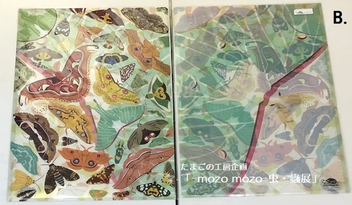 たまごの工房企画「-mozo mozo- 虫・蟲展」 その6_e0134502_20572396.jpg