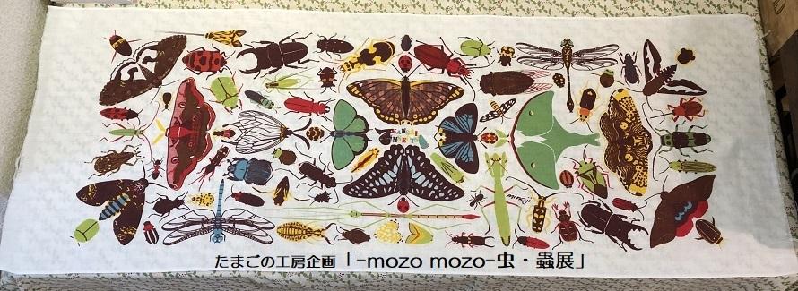 たまごの工房企画「-mozo mozo- 虫・蟲展」 その6_e0134502_20575824.jpg