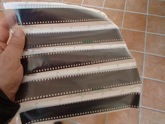 古いフイルムカメラに残されていた写真_f0064906_12311201.jpg