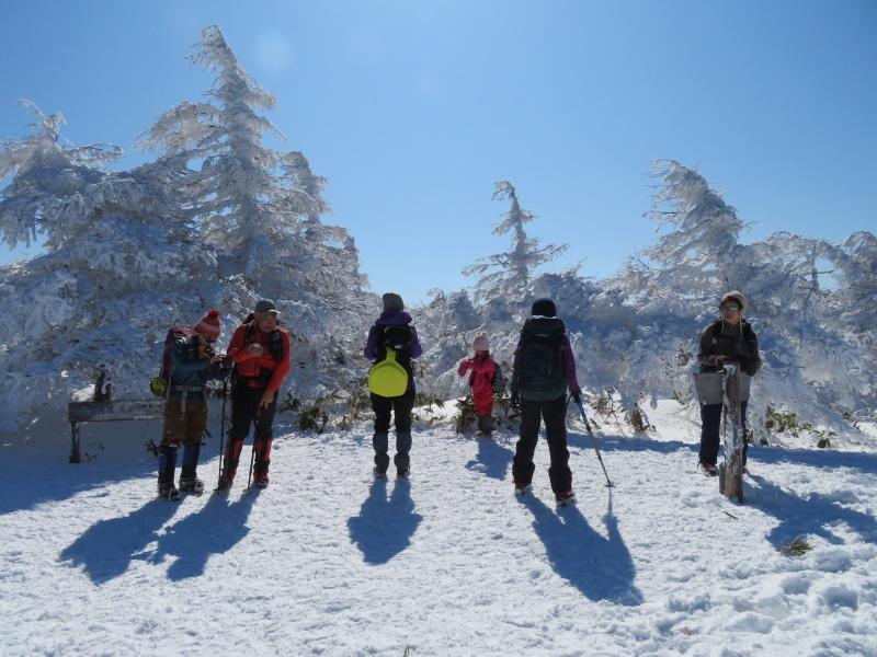 樹氷林を行く 南沢山 (1,564M)    横川山 編_d0170615_09135794.jpg