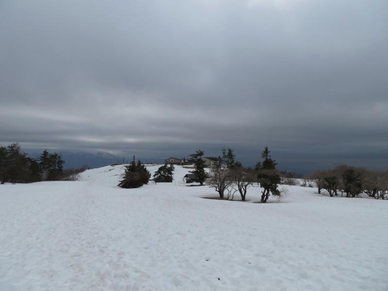 雪の 伊吹山 (1,377.3M)    下山 編_d0170615_19095846.jpg