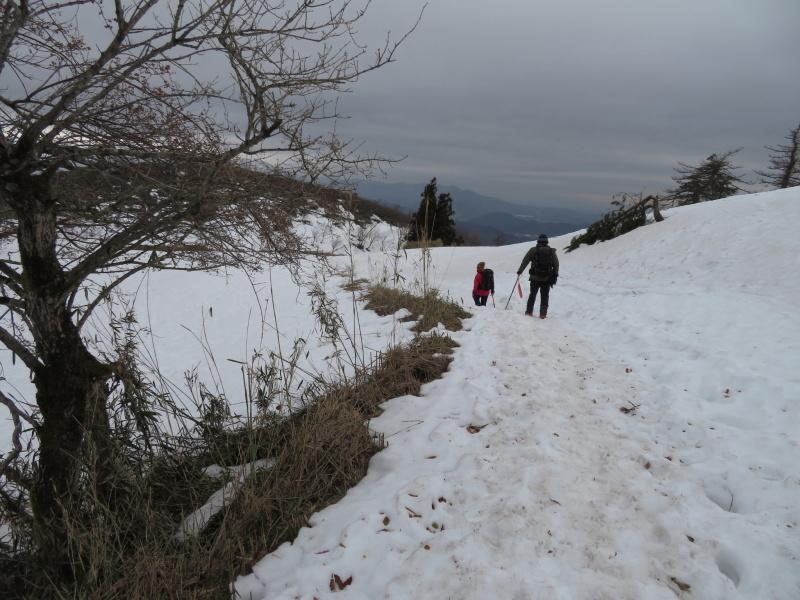 雪の 伊吹山 (1,377.3M)    下山 編_d0170615_19100833.jpg
