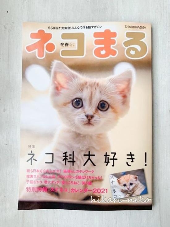 横たわったトーテムポールで「猫まる大賞」いただきました_e0364523_22151819.jpg
