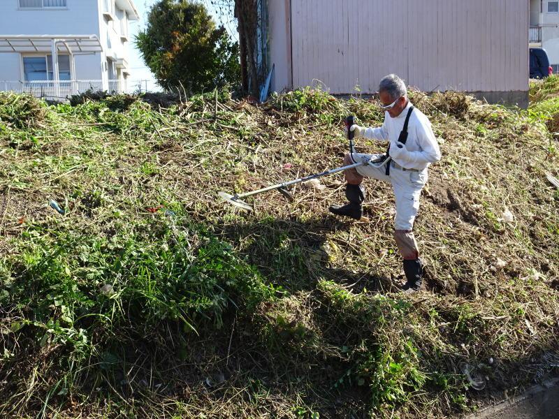 前の土手の草刈りの手伝い_c0108460_14145934.jpg