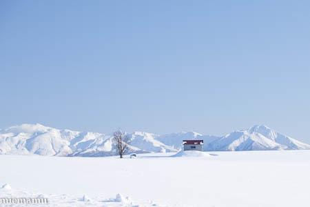 赤い屋根の丘と十勝岳連峰~1月の美瑛_d0340565_19490470.jpg