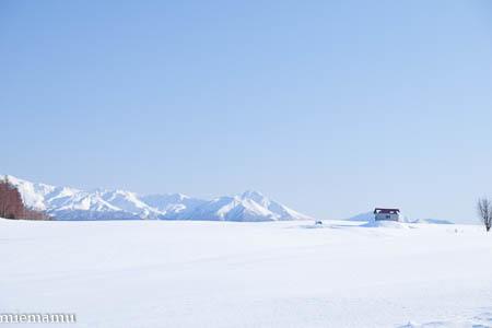 赤い屋根の丘と十勝岳連峰~1月の美瑛_d0340565_19490976.jpg