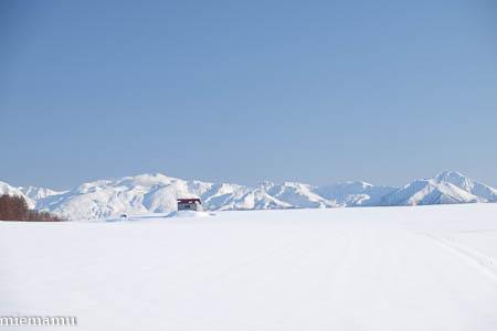 赤い屋根の丘と十勝岳連峰~1月の美瑛_d0340565_19491792.jpg