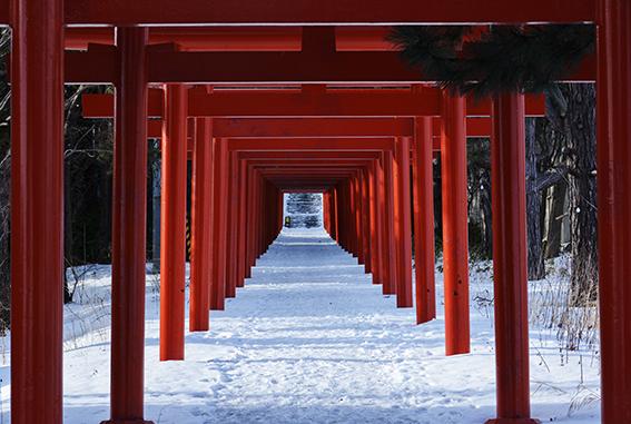 冬景色 15_f0143469_07511682.jpg